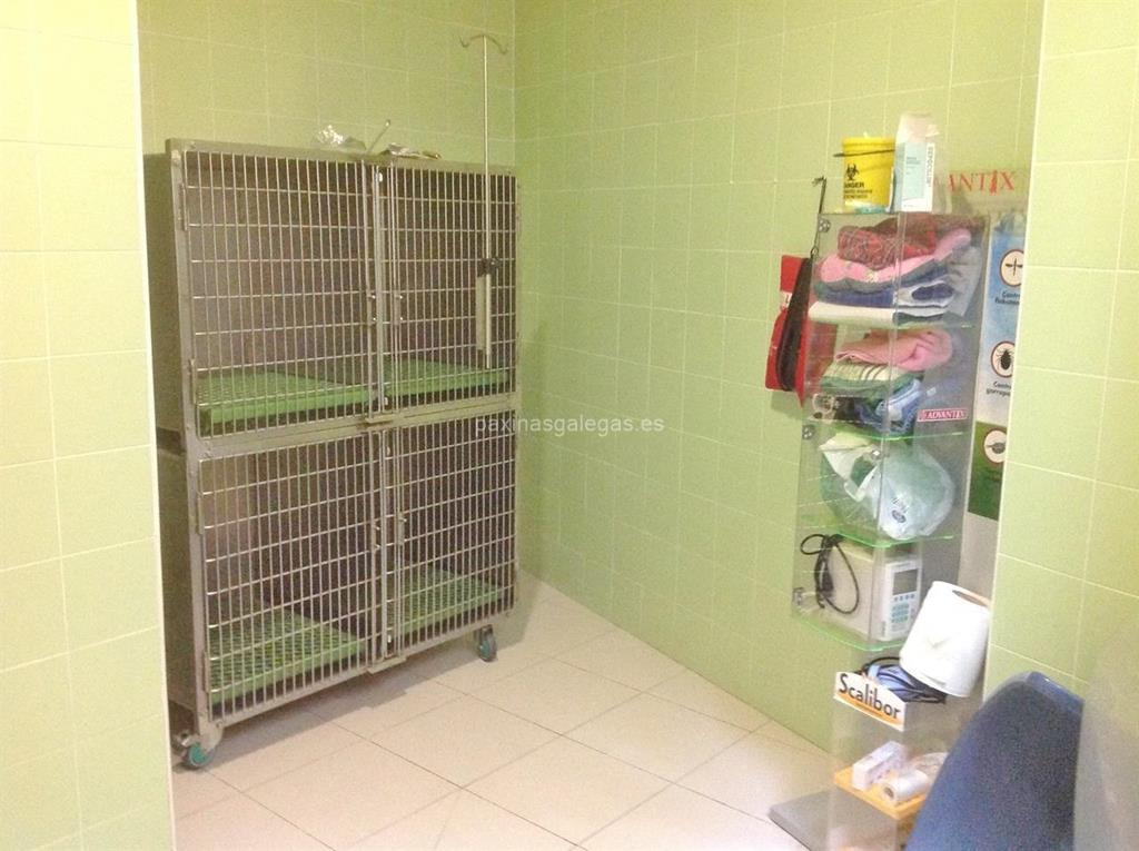 A estaci n centro veterinario ourense - Clinicas veterinarias ourense ...