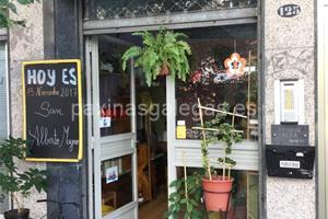 Ari vigo for Viveros de plantas en vigo