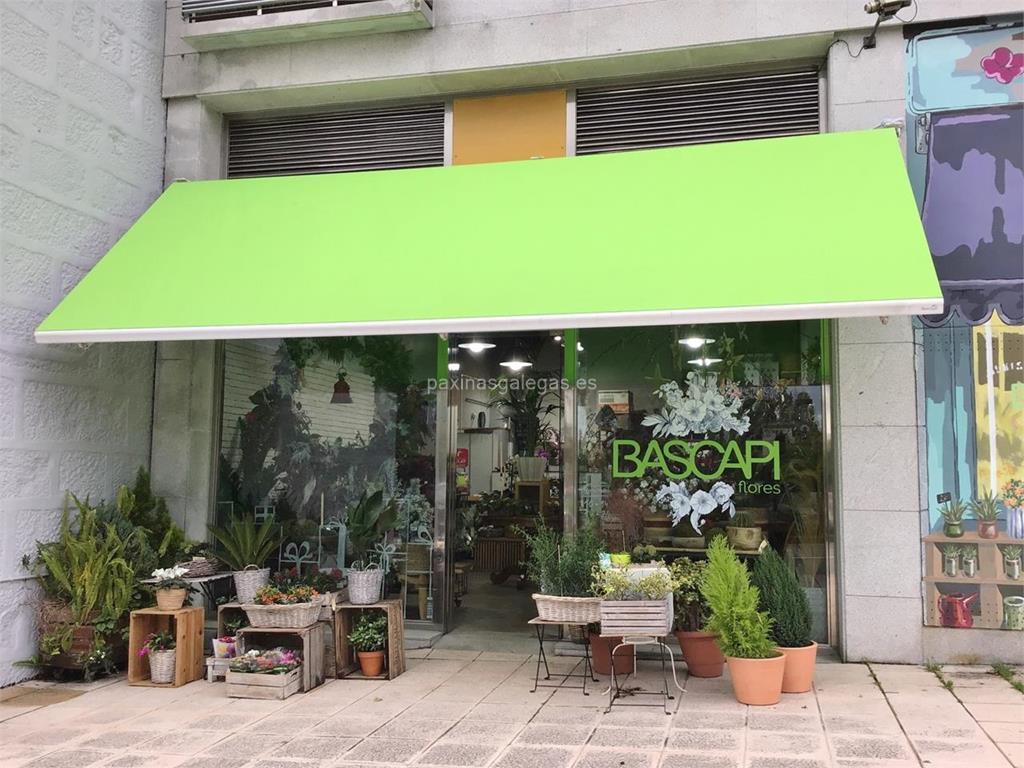 Bascapi florister as vigo avda de castrelos 99 for Viveros de plantas en vigo