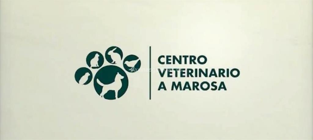 video corporativo Centro Veterinario A Marosa
