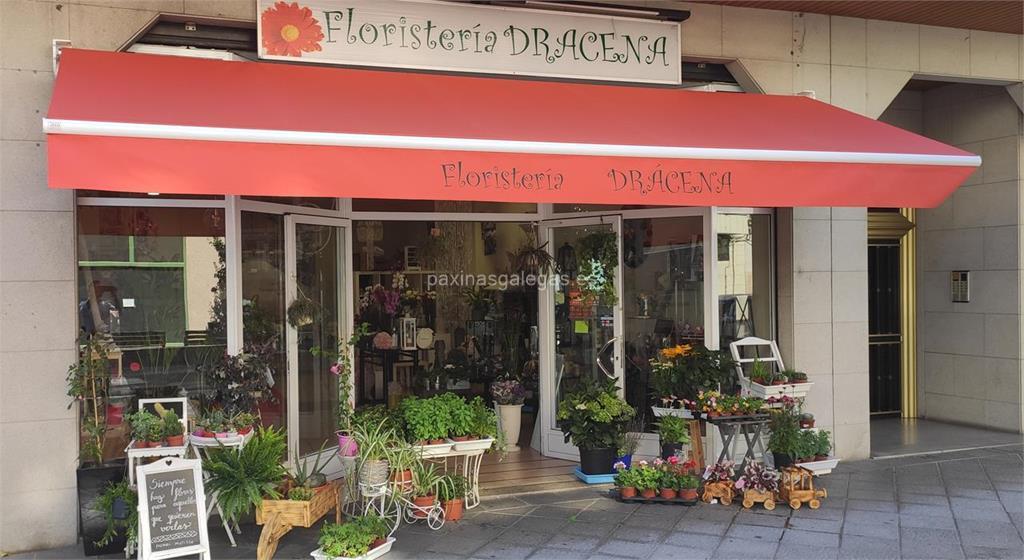 Florister a dr cena mandaflor ourense for Viveros ourense