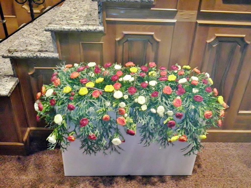 Florister a rafia flor 10 ourense for Viveros ourense