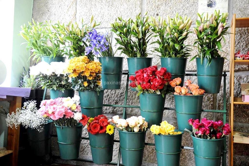 Florister a trudel waidele vigo for Viveros de plantas en vigo