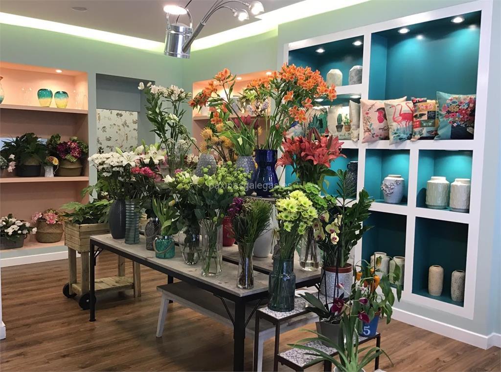 Gadea flores y plantas vigo for Viveros de plantas en vigo
