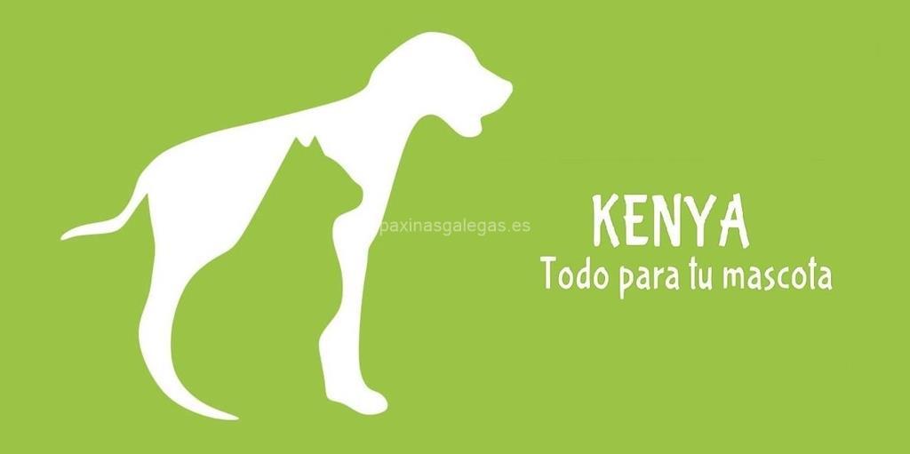 Kenya todo para tu mascota pontevedra - Todo para nuestras mascotas ...