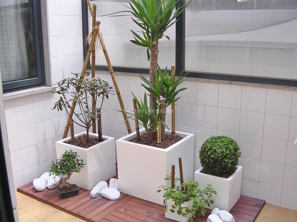 M is xard n vigo for Viveros de plantas en vigo