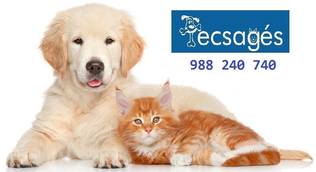 Tecsag s ourense - Clinicas veterinarias ourense ...
