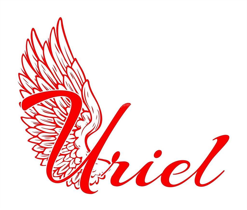 Resultado de imagen de ARIEL Y URIEL